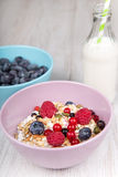 Healthy breakfast with home made muesli, fresh blueberry and mil Stock Images