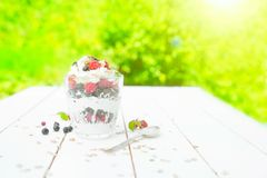 Healthy breakfast: layered dessrt yogurt parfait with fresh raspberries and black currant on wooden table over garden.  Stock Photography