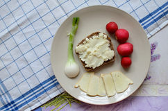 Healthy breakfast made of bread with sheep milk cheese, spring onion and radish Stock Photo