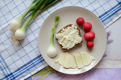 Healthy breakfast made of bread with sheep milk cheese, spring onion and radish royalty free stock images