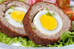 Healthy breakfast of meat stuffed egg on the lettuce. Macro horizontal stock photography
