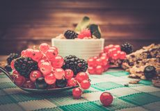 Healthy breakfast with muesli and berries Royalty Free Stock Images