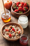 Healthy breakfast with muesli and berry Stock Photography