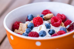 Healthy breakfast -muesli and fresh fruits Stock Image