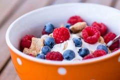 Healthy breakfast -muesli and fresh fruits Stock Image
