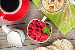 Healthy breakfast with muesli and milk Royalty Free Stock Photo