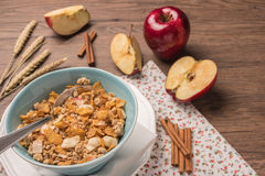 Healthy breakfast with muesli, red apple and cinnamon on rustic Stock Photography