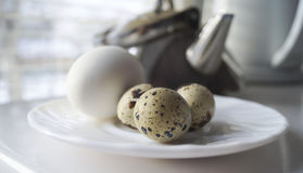A healthy breakfast of quail eggs Royalty Free Stock Image