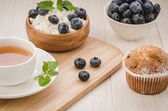 healthy breakfast: tea with mint, cottage cheese, cake and fresh berries/healthy breakfast: tea with mint, cottage cheese, cake royalty free stock photos