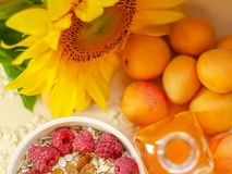Healthy breakfast. White plate of oatmeal with dried apricots and raspberries, a glass of an apricot juice and fresh. Apricots on a white table. Summer harvest royalty free stock photos