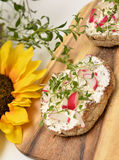 Healthy breakfast. Whole grain rolls with curd and radishes Royalty Free Stock Photos