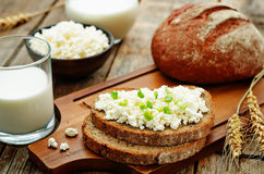 Healthy Breakfast with whole grain rye bread, cottage cheese and Royalty Free Stock Photos