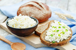 Healthy Breakfast with whole grain rye bread, cottage cheese and Stock Image