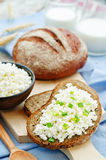 Healthy Breakfast with whole grain rye bread, cottage cheese and Royalty Free Stock Image