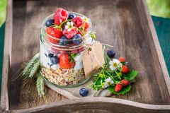Healthy breakfast with yogurt and berry fruits in sunny day Stock Photo