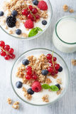 Healthy breakfast with yogurt and granola Stock Photos