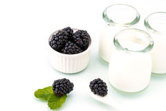 Healthy breakfast with yogurt and blackberry, dieting, freshness Royalty Free Stock Photo