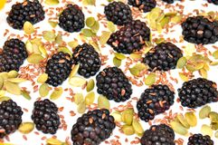 Healthy breakfast with yogurt and blackberry Royalty Free Stock Photos