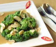 Healthy Broccoli Cuisine. Spicy brocolli and garlic dish Royalty Free Stock Photo