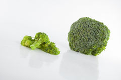 Healthy brocoli Stock Photography