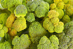Healthy brocoli background Royalty Free Stock Images