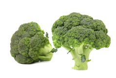 Healthy brocoli. Royalty Free Stock Photography
