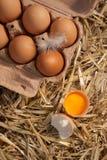 Healthy brown farm fresh eggs Stock Photos