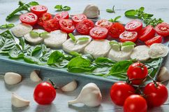 Healthy caprese salad with sliced mozzarella cheese, cherry tomatoes, fresh basil leaves, garlic. Traditional italian food royalty free stock images