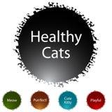 Healthy Cats Royalty Free Stock Photos