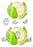 Healthy cauliflower vegetable cartoon character Royalty Free Stock Photo