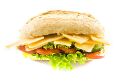 Healthy cheese sandwich Stock Photography