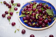 Healthy cherry fruits in blue bowl. Fresh berries stock images