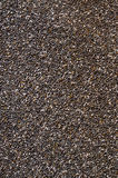Healthy Chia seed background. Close up background of Chia seeds Stock Images