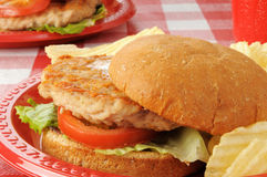 Healthy chicken burger Stock Images