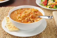 Healthy chicken gumbo Stock Photography
