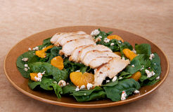 Healthy chicken salad Stock Photography