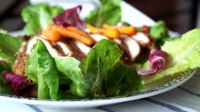 Healthy chicken salad stock footage