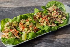 Healthy chicken tacos on butter leaf lettuce royalty free stock image