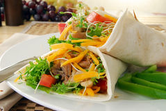 Healthy Chicken Wraps Stock Images