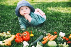 Healthy child and family natural nutrition Stock Images