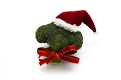 Healthy Christmas royalty free stock images