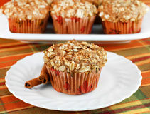 Healthy Cinnamon, Apple and Granola Muffins Stock Images
