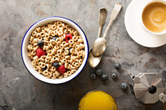 Healthy cold cereal in a bowl Stock Image