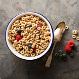 Healthy cold cereal in a bowl Royalty Free Stock Photos