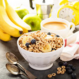 Healthy cold cereal in a white bowl Royalty Free Stock Photography