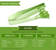 Healthy Collection Celery. The celery health benefits. Vector illustration with useful nutritional facts. Essential vitamins and minerals in healthy food Stock Photo