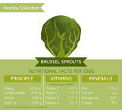 Healthy Collection Image. Brussel sprouts benefits. Vector illustration with useful nutritional facts. Essential vitamins and minerals in healthy food. Medical Royalty Free Stock Photos