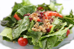 Healthy Colorful Green Salad Royalty Free Stock Photography