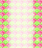 Healthy Colorful Kiwi Fruit Invitation Card Stock Image
