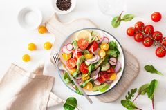 Healthy colorful vegan tomato salad with cucumber, radish, onion royalty free stock photography